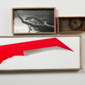 """Fausta Squatriti:  """"Memento mori"""" -  Galleria Weber & Weber - Torino"""